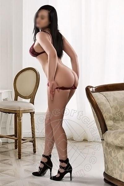 Daria New  RAVENNA 3512914910